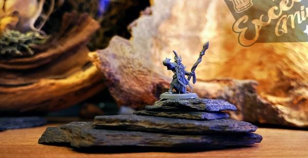 Shadow Elves - Sorcerer on Foot