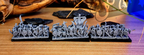 Orcs&Goblins - Full Steppe Goblins Regiment 1