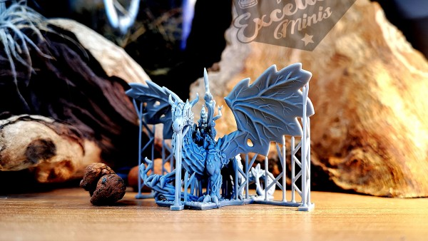 Elves of the Wood General on Forest Dragon