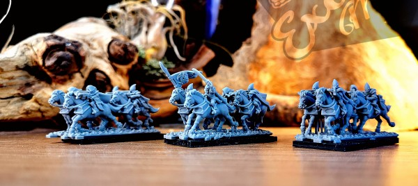 Shadow Elves - Full Scout Riders on Horse Regiment